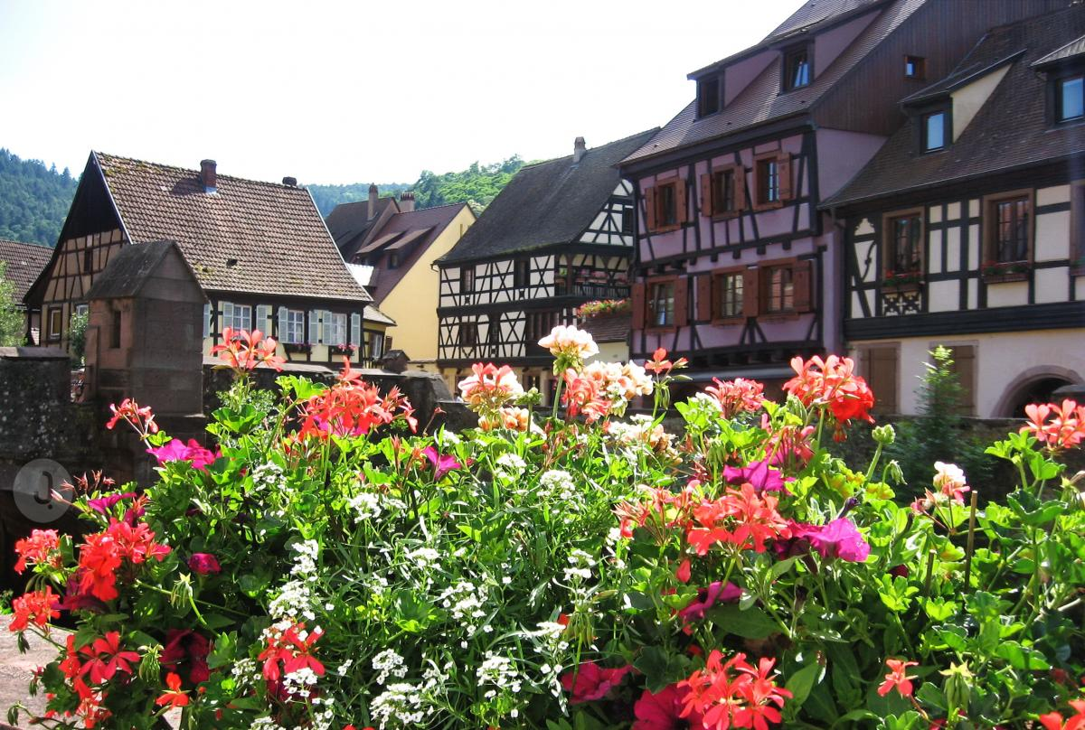 Kaysersberg in One Hour