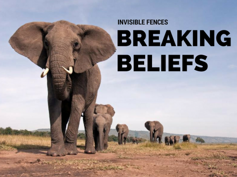 Overcoming Limiting Beliefs -  Invisible Fences Forces That Hold You Back