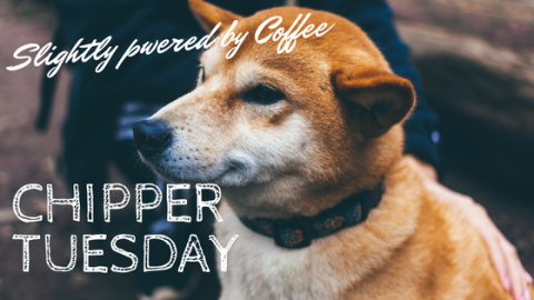 Chipper Tuesday (slightly coffee powered)!