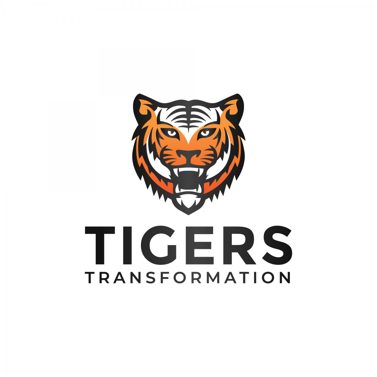 Tigers Transformation Logo