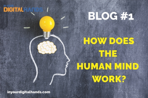 HOW DOES THE HUMAN MIND WORK?