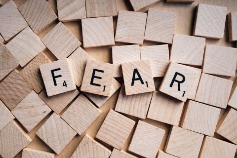 Fear: Seek the Unknown