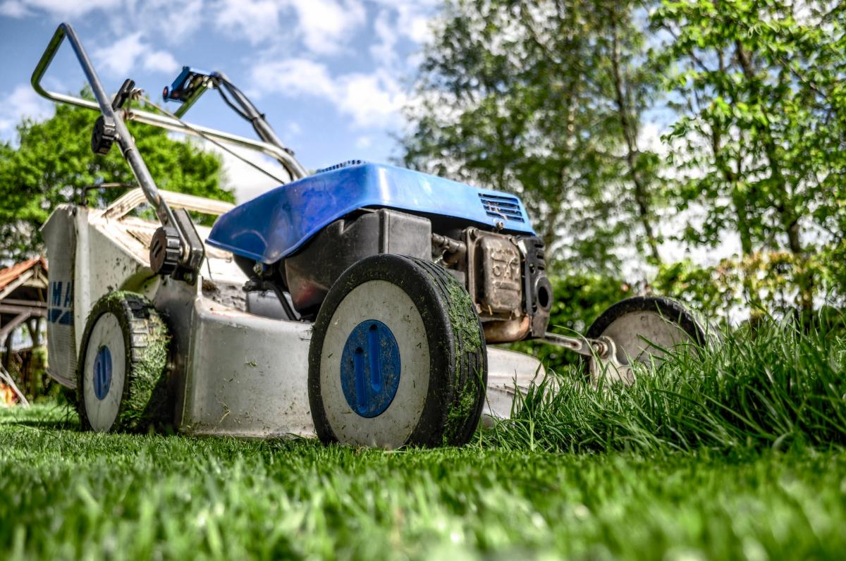 What Does Lawn Service Have To Do With Having A Vision?