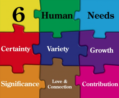 Why the 6 human needs are important for happiness and fulfilment.