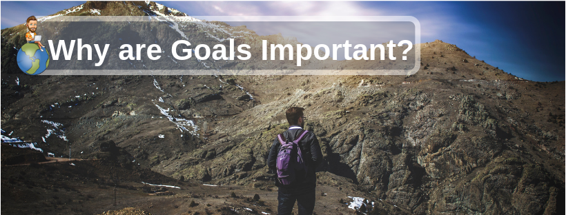 Why are goals important?
