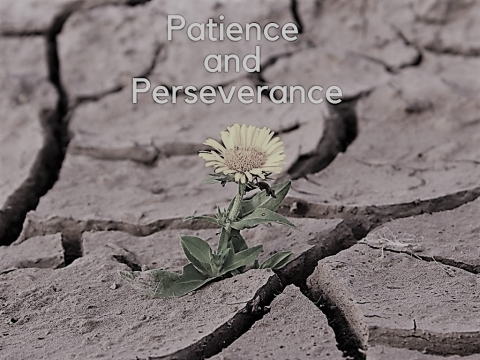 Patience and perseverance!