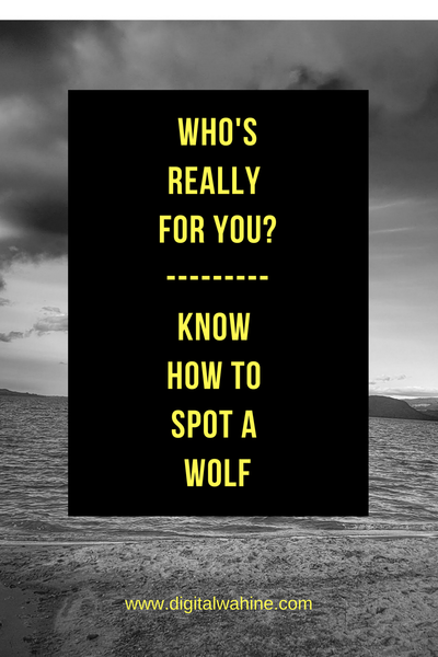 Who's really for you? Know how to spot a wolf