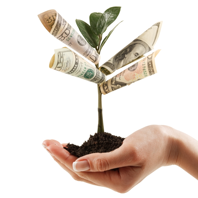 The Only way to make a real change to your life and grow your own money tree.