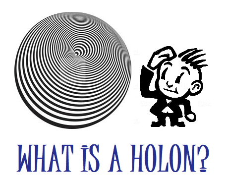 WHAT IS A HOLON?