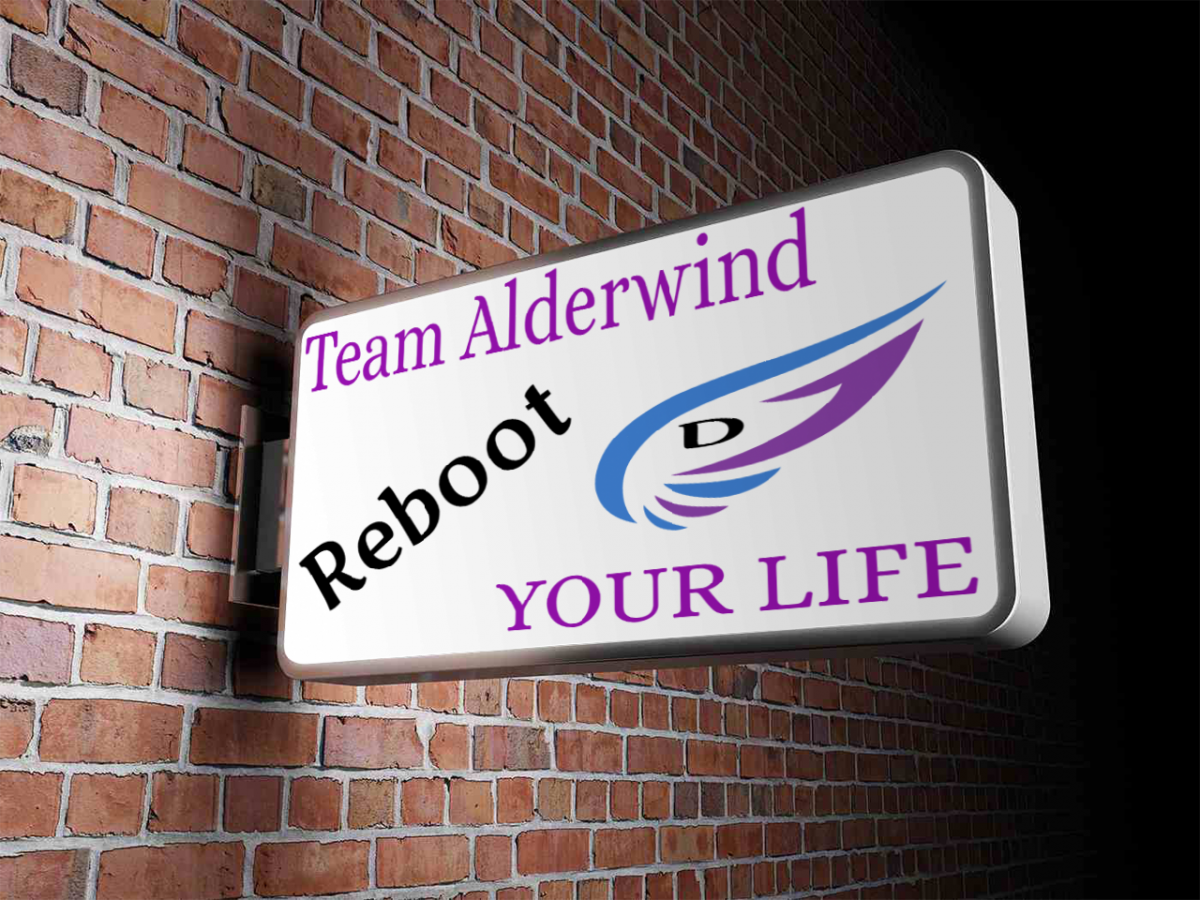Alderwind REBOOT Your Life Day 1 of 90 - Start Here - 5 Steps to Success Online