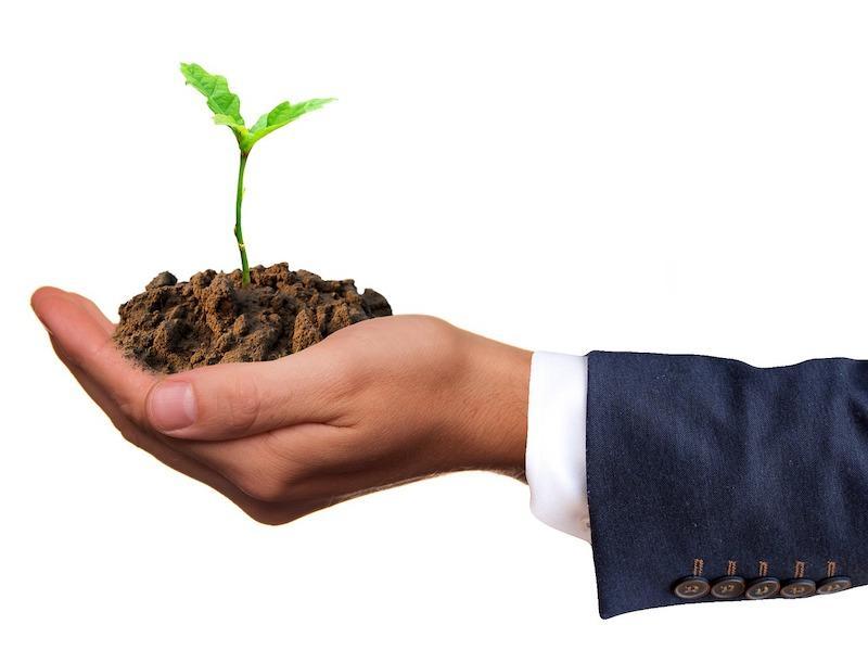 Overcome Negative Money Beliefs To Achieve Success Online