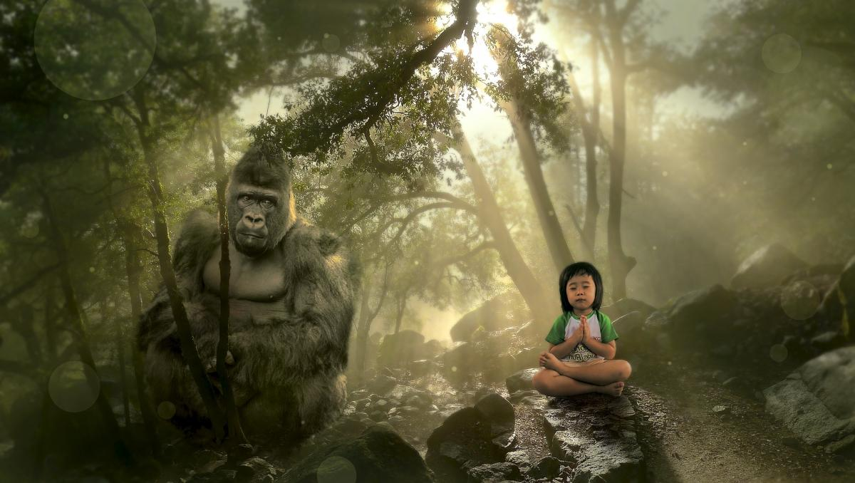 7 Tips For Meditation