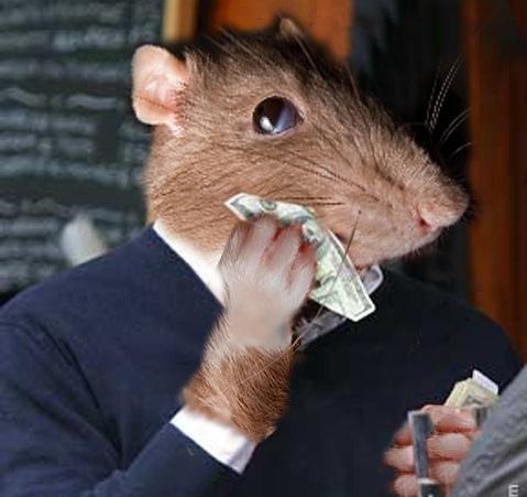 Dr Brad Reveals How You Can Escape The Rat-Race