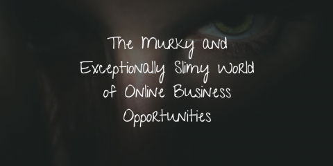The Murky and Exceptionally Slimy World of Online Business Opportunities